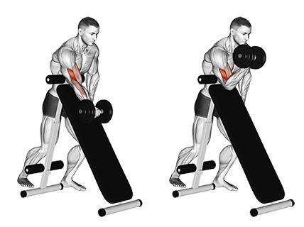 5 cviků pro dokonalý biceps