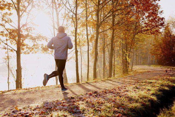 obrázek zeverypixel.com