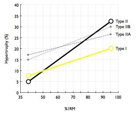 Zaostřeno na trénink rychlosti. Znamená více svalů ivětší rychlost?