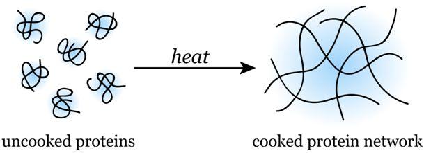 Zničím bílkoviny vproteinovém prášku, když sním pečua vařím?