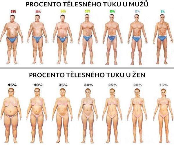 Ideální procento tělesného tuku: Kdy začít hubnout, akdy naopak přibrat?