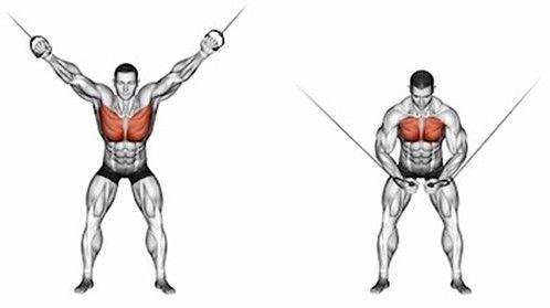 7 nejlepších cviků pro komplexní rozvoj prsních svalů