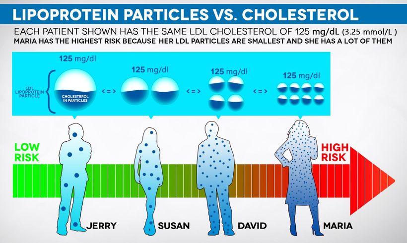 Proč na příjmu dietního cholesterolu nezáleží?