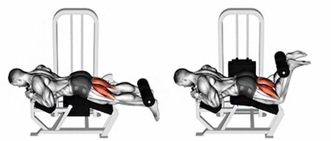 Hamstringy: 7 efektivních cviků pro silnější, svalnatější avyrýsovanější zadní stranu stehen