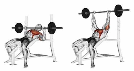 7 najlepších cvikov pre komplexný rozvoj prsných svalov