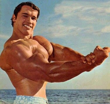 Arnold Schwarzenegger - výživa