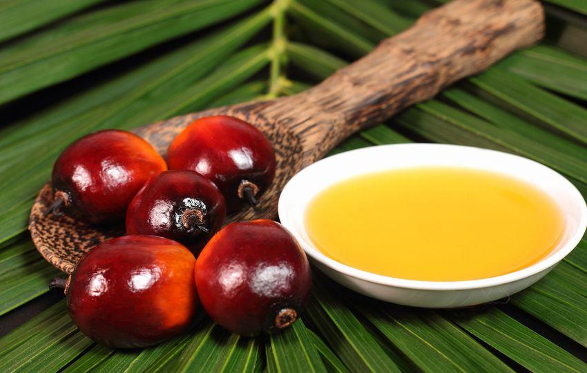 Fakta o palmovém oleji. Škodí jen přírodě, nebo i člověku?