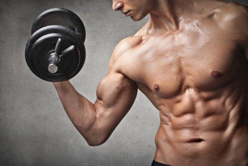Fitness HANTÝRKA, kterou musíte znát před prvním vstupem do fitka