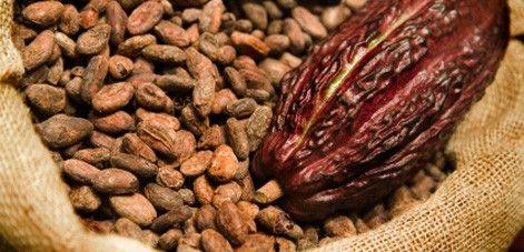 Kakao a antioxidanty