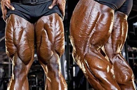 Mohutná stehna