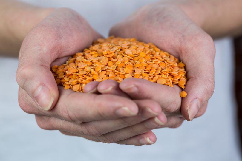 Nedostatek železa: Co nám hrozí a z jakých potravin ho čerpat?