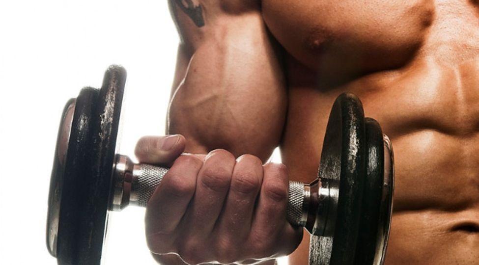 Velká šestka pro biceps