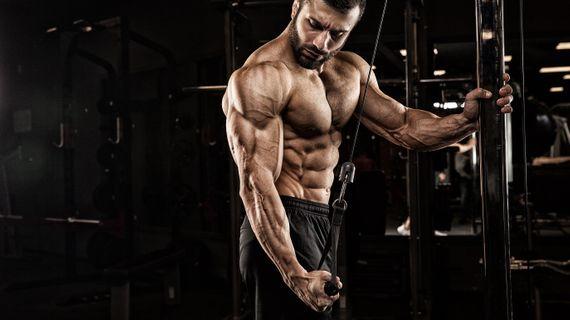 Jak na mohutné paže? Vsaďte na efektivní trénink tricepsů