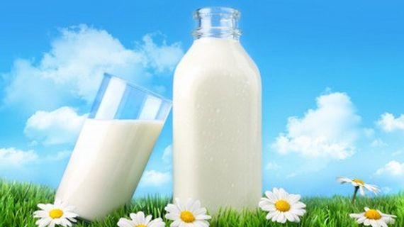 Mléko - ano či ne ve fitness výživě?