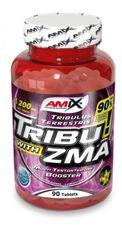 Amix Tribu 90% with ZMA®