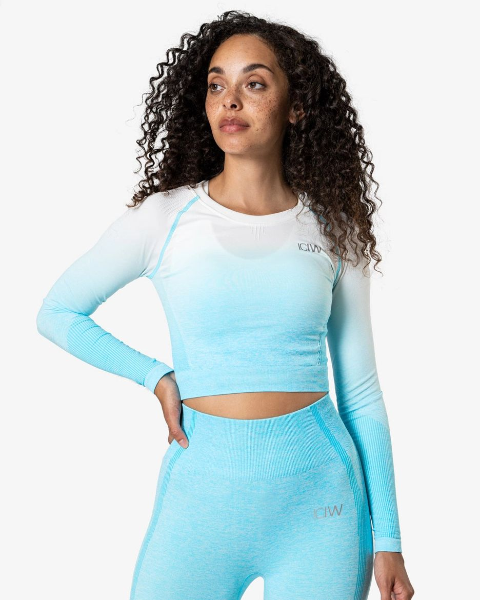 ICANIWILL Crop Top Ombre Seamless